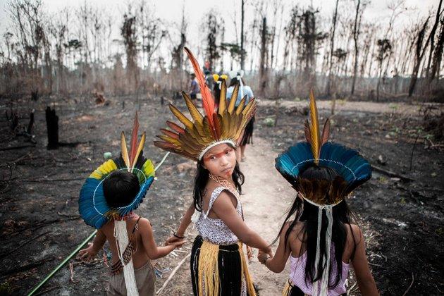 Los niños de la tribu huni kuni en el estado de Acre, en Brasil, caminan por sus tierras quemadas, que fueron incendiadas por agricultores locales en septiembre de 2019. Foto: | David Tesinsky/Zuma Press/PA Images