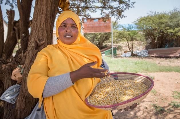 Una productora muestra en Harguesia, en Somalia, granos de maíz listos para ser usados como semillas. Foto: Mustafa Saeed /FAO