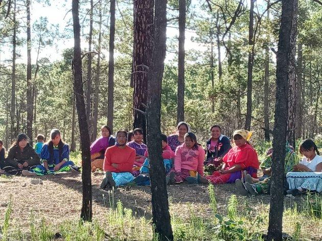 Una reunión de mujeres de Bosques de San Elías Repechique, el municipio de Bocoyna, en el norteño estado de Chiahua, en México. Foto: Patricia Mayorga