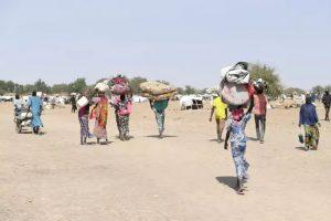 Refugiados de Nigeria se desplazan hacia asentamientos en el norte de la vecina Camerún. La violencia en la región fronteriza de Nigeria, Níger, Camerún y Chad, deja miles de muertos cada año y ha desplazado de sus hogares originales a tres millones de personas. Foto: Xavier Bourgois/Acnur