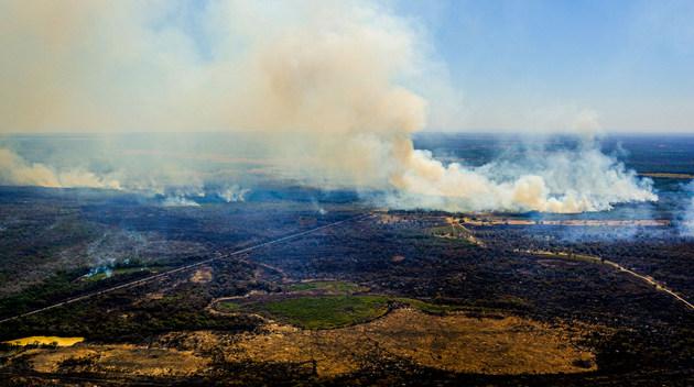 Imagen aérea de uno de los incendios en Poconé, el municipio más afectado en las entradas al norte del Pantanal, en el estado de Mato Grosso. Los incendios en el Pantanal empezaron más temprano este año, por la fuerte sequía, que se ceba con el mayor humedal del mundo desde 2019. Foto: Mayke Toscano/Sema-Fotos Públicas