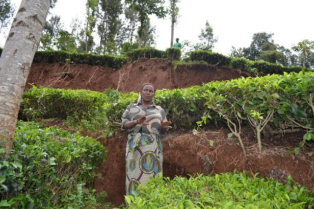 ¿Qué tan inclusivos son el activismo y las discusiones sobre el cambio climático? La mayoría de los movimientos y organizaciones ambientales en Estados Unidos y Europa son principalmente de clase media y blanca, y poseen una gran cantidad de recursos y establecen la agenda para el trabajo de políticas y la recuperación del ecosistema. En la imagen, una mujer ante un deslizamiento de tierra por lluvias intensas en Kenia, parte del cambio climático. Foto: Isaiah Esipisu / IPS
