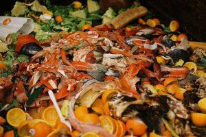 Imagen de basura orgánica refleja la importancia de combatir el desperdicio alimentario.