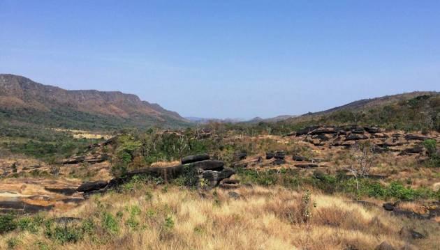 Paisaje del Cerrado, un ecosistema de sabana tropical de Brasil amenazado por el avance de la agricultura extensiva. De acuerdo con un estudio de investigadores de 12 países, la restauración de estepas y sabanas en Sudamérica y África aporta importantes beneficios para la biodiversidad. Foto: Luís Felipe Figueiredo/Flickr