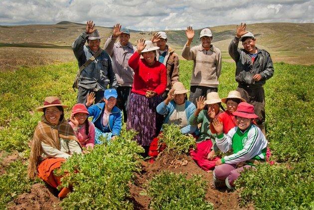 La mitad de los habitantes rurales de la región vive en la pobreza, aunque el campo genera 20 por ciento de las exportaciones y del empleo, y se lo reconoce como baluarte de la recuperación económica, social y ambiental pospandemia. Foto FAO