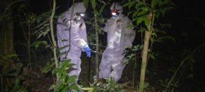 Análisis de virus potencialmente peligrosos para el ser humano realizado por la Plataforma Intergubernamental Científico-Normativa sobre Biodiversidad y Servicios a Ecosistemas (IPBES, en inglés).