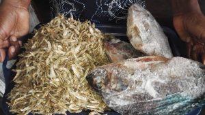 Pescado seco vendido en mercados refleja la amenaza a la sustentabilidad alimentaria en Zimbabwe.