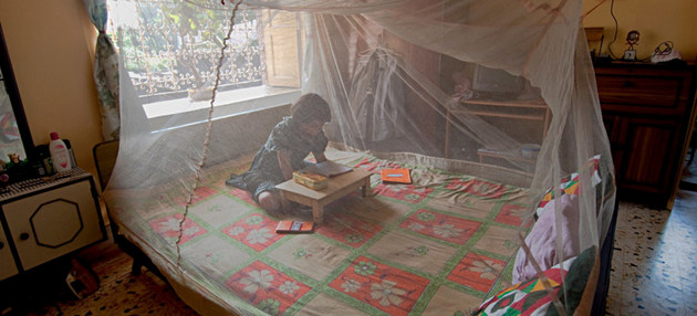 Una niña lee protegida por tela metálica tratada con insecticida contra mosquitos transmisores de malaria. La lucha por prevenirla se mantiene, pero la OMS teme por déficits en auxilios con medicamentos para tratar a los ya enfermos. Foto: Joydeep Mukherjee/OMS