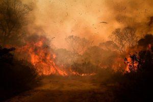 """La covid-19 en América Latina ha actuado de """"cortina de humo"""" para diversas crisis actuales."""