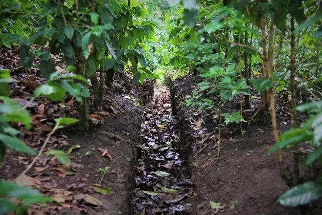 Luego de la tormenta tropical Amanda construyen acequias en El Salvador para evitar inundaciones.