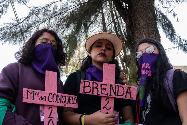 """Feminicidios en México: """"Una cadena de violencias contra las mujeres desde el nacimiento""""."""