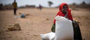 En 2019, Etiopía experimentó la quinta peor crisis alimentaria del mundo, según el Programa Mundial de Alimentos. Foto: Michael Tewelde/PMA