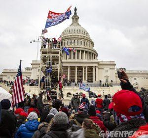 Los partidarios de Donald Trump se sienten despreciados por la cultura dominante. Aquí cuando cercaban la sede del Capitolio antes de asaltar la sede del Congreso de Estados Unidos el 6 de enero en Washington. Foto: Greenpeace USA