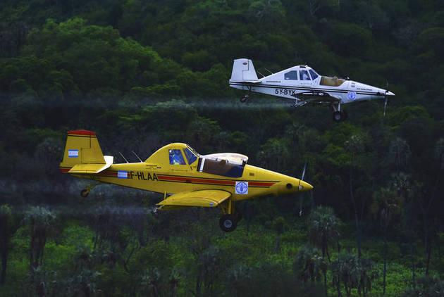 Aeronaves de observación y fumigación, al servicio de la FAO y países de África oriental, combaten a los enjambres de langostas del desierto que devoran miles de hectáreas de cultivos y pastizales. Foto: Michael Tewelde/FAO