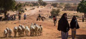 En la zona pastoril de Tillaberi, oeste de Níger, milicias yihadistas atacaron dos aldeas al despuntar 2021, causando la muerte de un centenar de personas y aumentando la crítica situación de refugiados y desplazados en la región. Foto: Vincent Tremeau/Unicef