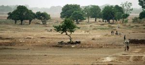 Lecho de un río seco cerca de Uagadugú, la capital de Burkina Faso, un área de tierra degradadas como las que contemplan los programas de restauración de paisajes y apoyo a la agricultura sostenible del Banco Mundial y la Unión Africana. Foto: Kay Muldooon/ONU
