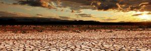 La sequía, que arruina la agricultura en regiones pobres del planeta, se intensifica con el aumento de la temperatura mundial. La ONU considera que atender el cambio climático debe ser la prioridad para todos, en todas partes. Foto: Canva Pro/CMNUCC
