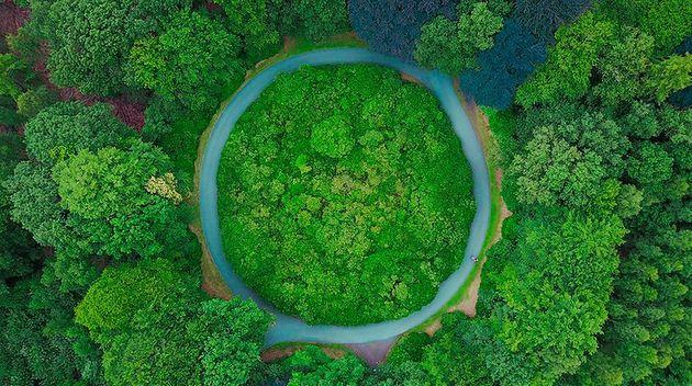 La economía circular se basa en la fórmula 3R: reducir, reciclar y reutilizar, para disminuir el consumo de materiales vírgenes que conlleva una sobreexplotación de la naturaleza, y la generación de los residuos que no puedan ser aprovechables y generan contaminación. Foto: Thomas Lambert/Unsplash-Pnuma