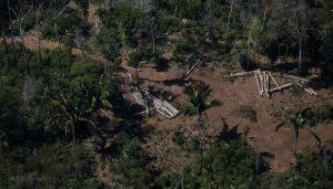 La aplicación de multas ambientales por deforestación ilegal en Brasil se redujo en 72 por ciento a pesar del aumento de las tasas de deforestación entre 2019 y 2020. Foto: Amazônia Real/Flickr-Creative Commons