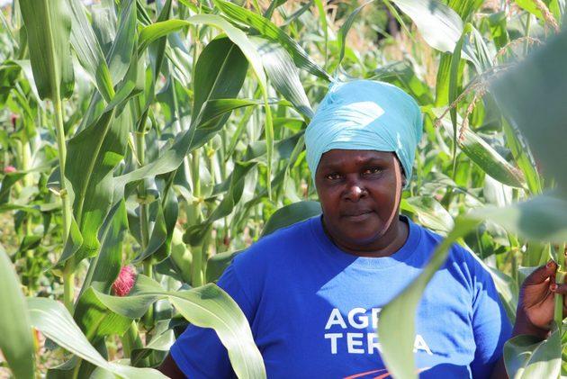 Halima Elias Mtwethe, residente en la aldea de Mtepa, en el sur de Tanzania, es una de las pequeñas agricultoras que mejoró su cosecha con un préstamo de la Sociedad Cooperativa de Ahorro y Crédito Mahanje. Foto: Isaiah Esipisu/ IPS