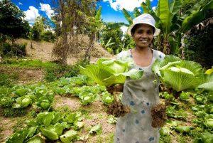Una agricultora a pequeña escala de Madagascar muestra sus coles producidas en forma ecológica. Ella forma parte de un sector vital para la seguridad alimentaria en el mundo, pero amenazado en forma creciente ante la toma de control de la producción y comercialización de alimentos por las empresas y su impulso a la llamada gran agricultura. Foto: FAO