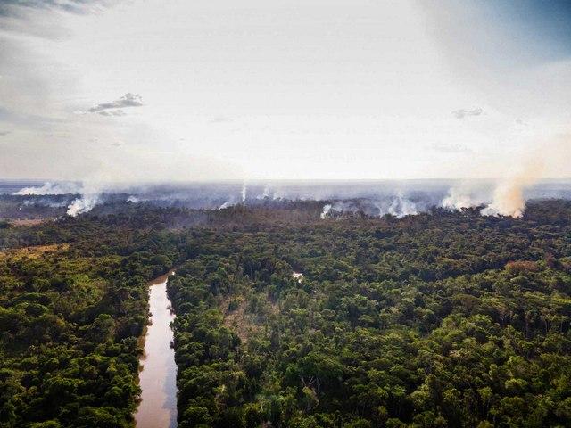 La deforestación y los incendios forestales ocurridos en la Tierra Indígena Alto Río Guamá, en la Amazonia Oriental, reflejan los efectos destructores de la política antiambiental del gobierno del presidente Jair Bolsonaro. La Amazonia forestal, los indígenas y pueblos tradicionales sufren la invasión de mineros, madereros y los que buscan tierras como patrimonio y no tanto para producir. Foto: Cícero Pedrosa Neto/Amazônia Real-Fotos Públicas