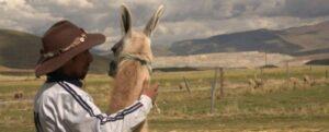 Los indígenas kána, que habitan tierras altas de la región de Cusco, en el sur de Perú, están expuestos a la contaminación con metales, que causa severos daños en sus organismos, producto de la actividad minera y la desatención que padecen en materia de salud. Foto: Nataniel Furgang/AI
