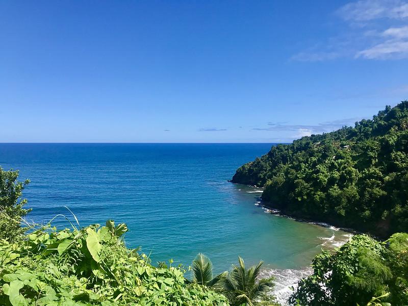 El Caribe insular cuenta con especies endémicas, ricos ecosistemas terrestres y marinos, pero la pérdida de biodiversidad como resultado de la degradación del hábitat natural y la deforestación, que se ve agravada por el cambio climático, está obstaculizando su desarrollo económico y social. Foto: Alison Kentish / IPS