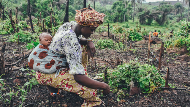 Una agricultora de subsistencia en Sierra Leona. Es uno de los sectores -como el turismo y los textiles- en que laboran millones de mujeres cuyos empleos e ingresos resultaron más perjudicados que los de los hombres por la crisis de la covid-19, y que obliga a una perspectiva de género para la recuperación. Foto: Annie Spratt/Unctad