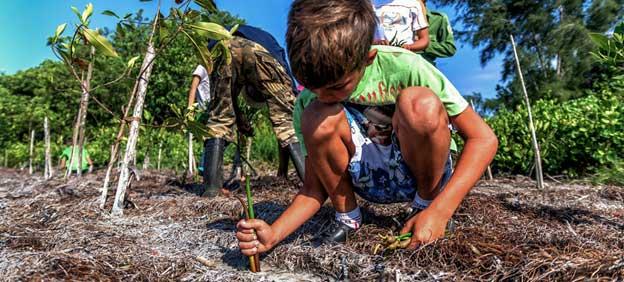 La restauración de los hábitats naturales, como se muestra en la imagen en Cuba, ayudará a frenar el cambio climático. Un nuevo estudio de la ONU dice que las inversiones anuales en soluciones basadas en la naturaleza deberán triplicarse para 2030 y multiplicarse por cuatro para 2050, si el mundo quiere hacer frente con éxito a la triple amenaza de las crisis climáticas, de biodiversidad y de degradación de la tierra. Foto: PNUD