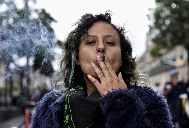 La Suprema Corte de Justicia de México echó abajo la prohibición de las actividades relacionadas con el autoconsumo de marihuana con fines recreativos. Foto: María Ruiz / Pie de Página