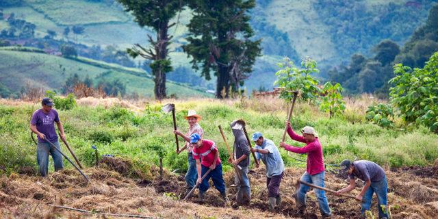 Agricultores del Departamento de Chaltenango de El Salvador. La agricultura es uno de los sectores que más empleo genera en América Latina y el Caribe. Foto: Alamy